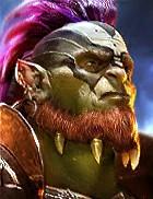 champion Galek Suprême
