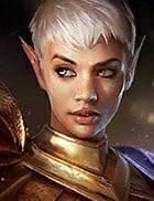 image de profil Sageguerre (Battlesage)